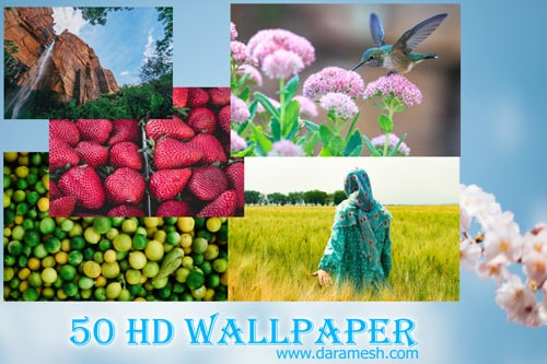 50-wallpaper-8-97